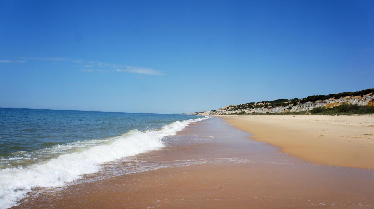 Alquiler vacaciones en Moguer, Huelva