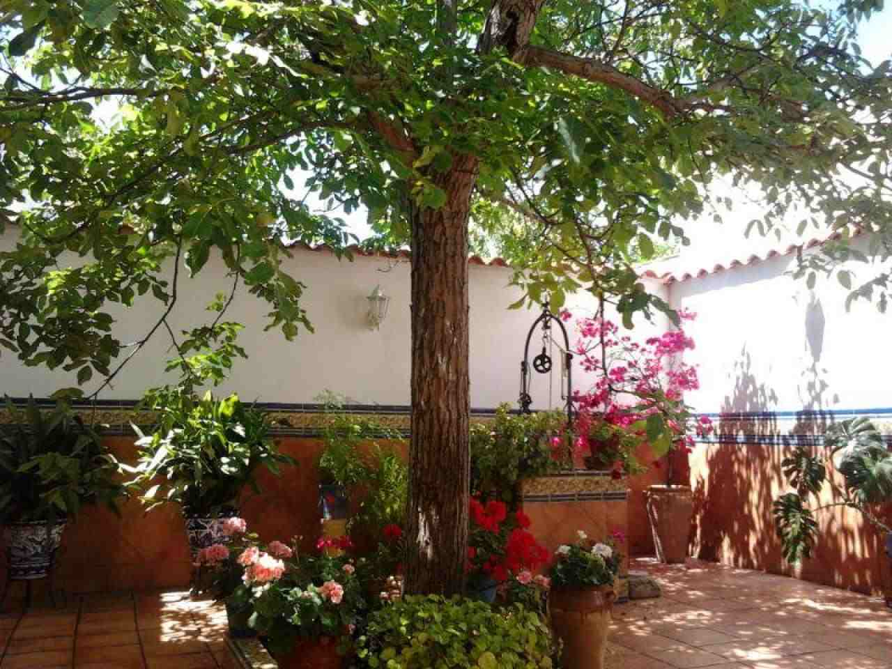Alquiler vacacional en Belmez, Córdoba