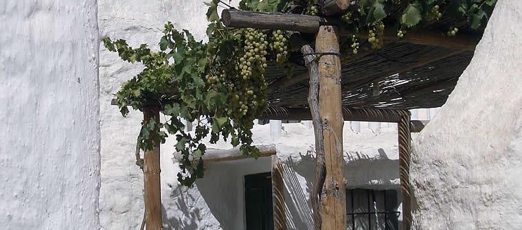 Alquiler vacacional en Baza, Granada
