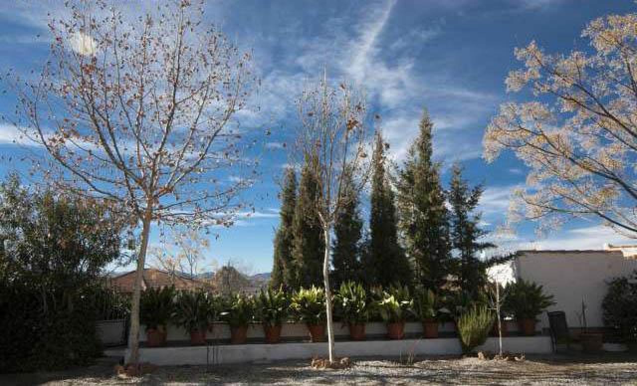 Casas en alquiler Purullena, Granada