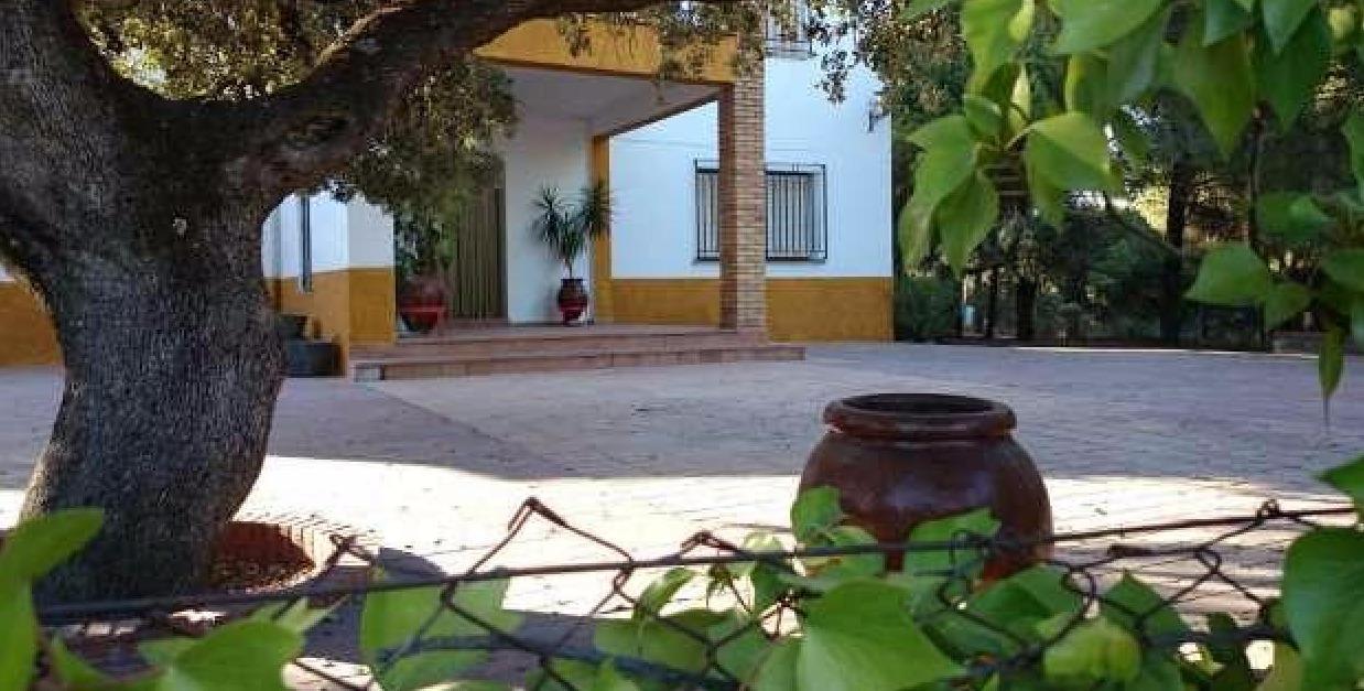 Pisos  alquiler Andújar, Jaén