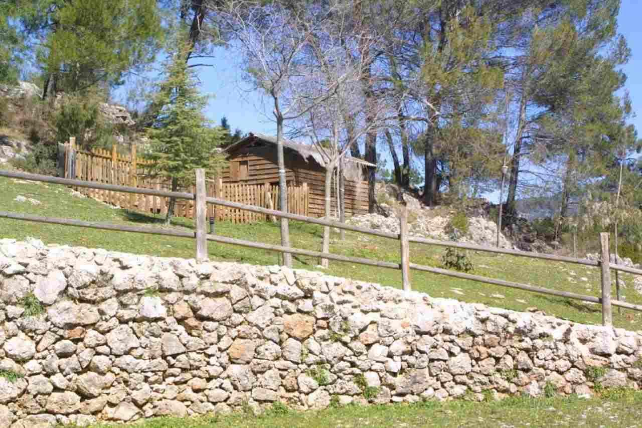 Apartamento para vacaciones Cortijos Nuevos, Jaén