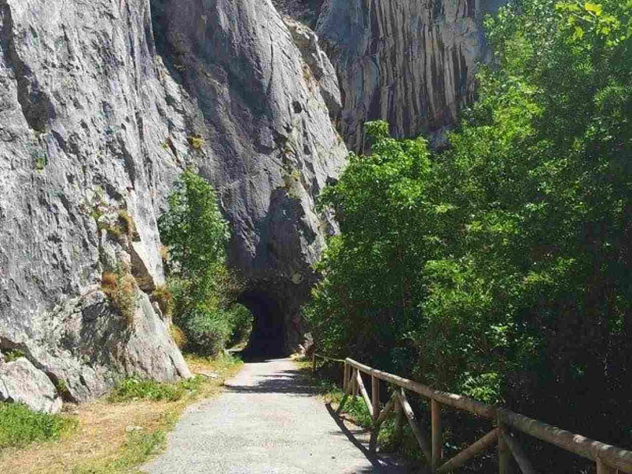 Pisos  alquiler Carrea, Asturias