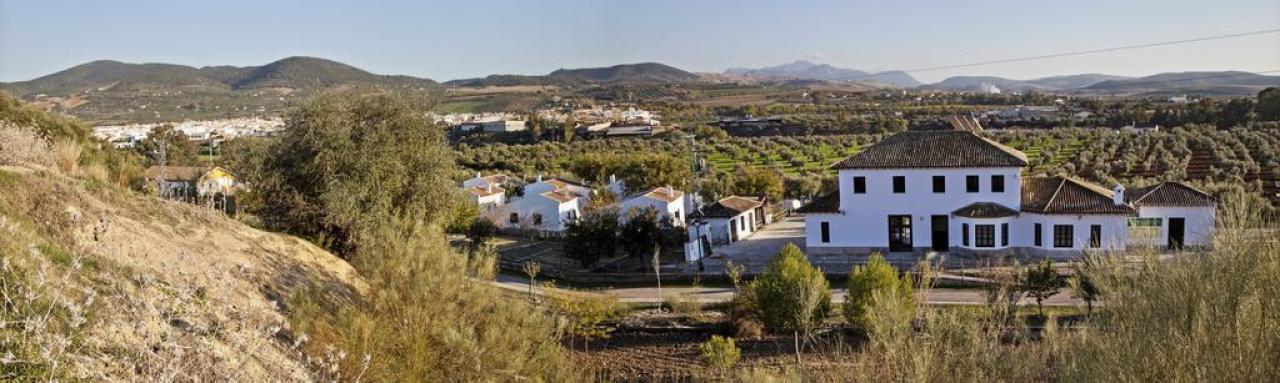 Alquiler de habitaciones Puerto Serrano, Cádiz
