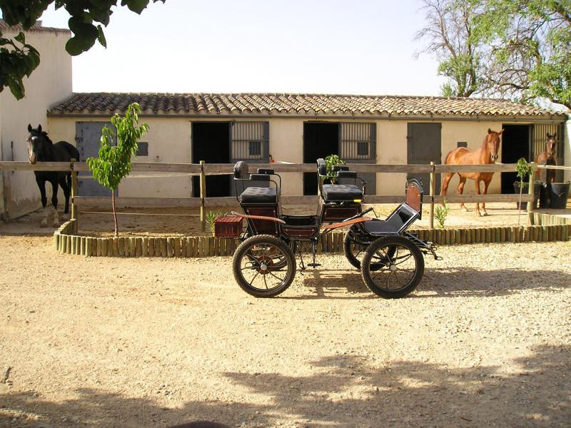 Alquiler vacacional en Villarrobledo, Albacete
