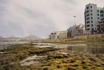 Alquiler de apartamentos Las Palmas de Gran Canaria, Las Palmas