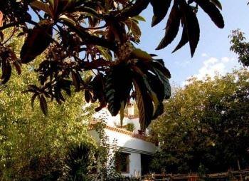 Alquiler vacaciones en Nigüelas, Granada