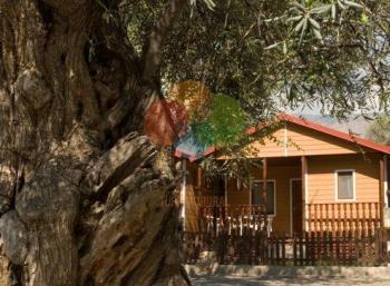 Alquier de Bungalow en Órgiva, Granada para un máximo de 6 personas con 2 dormitorios